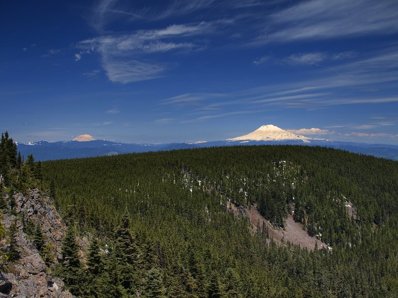 Mount Rainier (L) and Mount Adams from Green Point Mountain