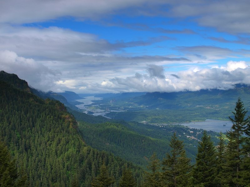 The Columbia River from the Nick Eaton Trail