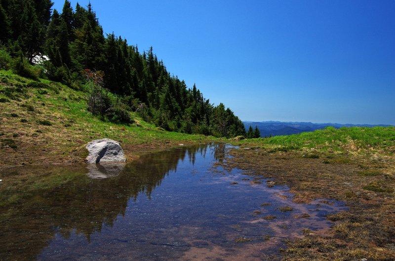 The seasonal tarn at 6,200 feet on Yocum Ridge