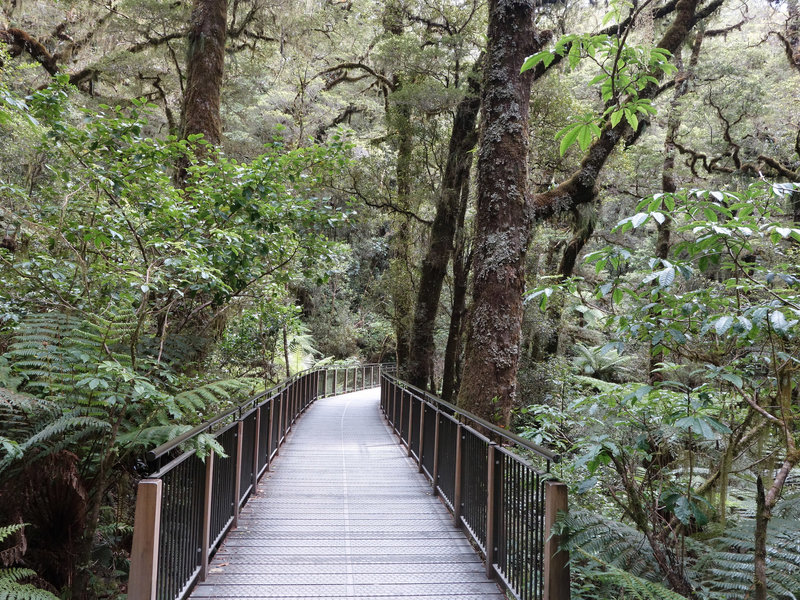 Wooden walkway at The Chasm