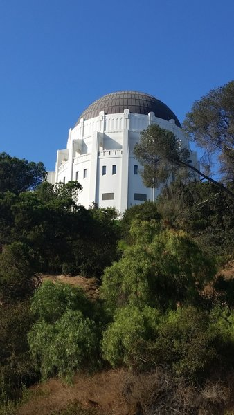Griffith Observatory from below