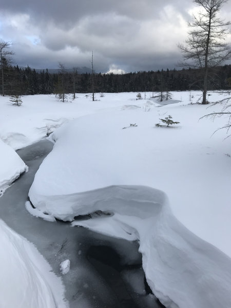 Creek feeding into Lonesome Lake
