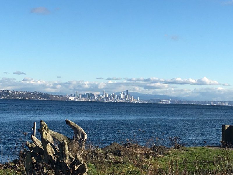 Views of the Seattle skyline at the start of the Cross Island Trail