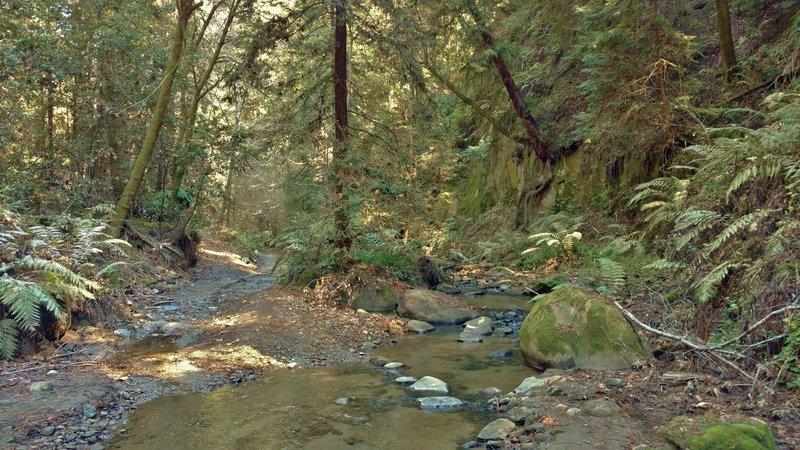 Hinckley Road runs along Hinckley Creek to this creek crossing.