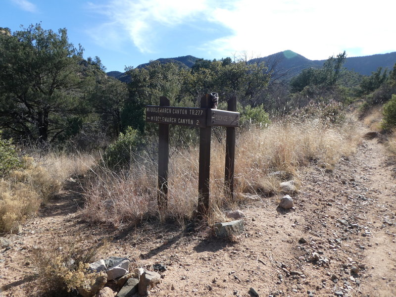Cochise Trail Middlemarch Canyon Fork