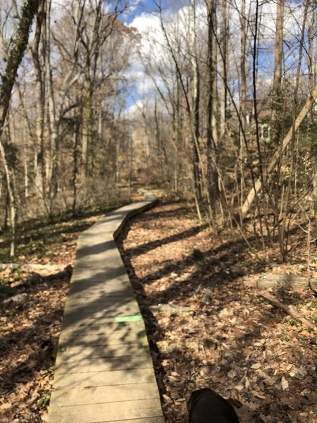 Boardwalk on the East/West trail near Old Holly Road.