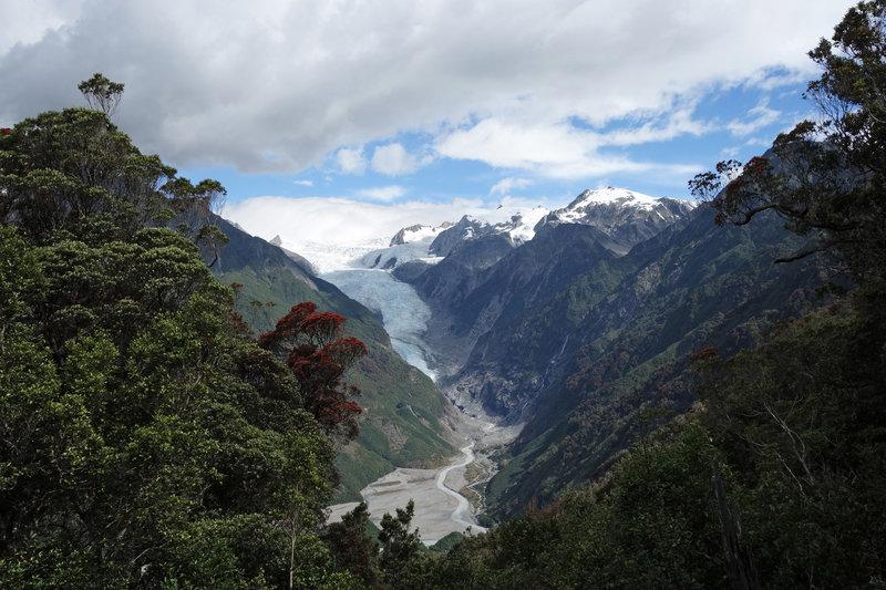 Franz Josef Glacier viewed from Rata point on the Alex Knob Track