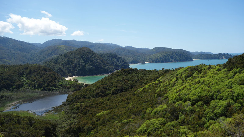 Anchorage Bay and Torrent Bay viewed from the Abel Tasman Coast Track