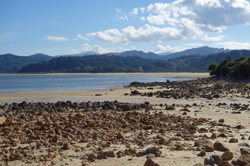 Tinline Bay along the Abel Tasman Coast Track