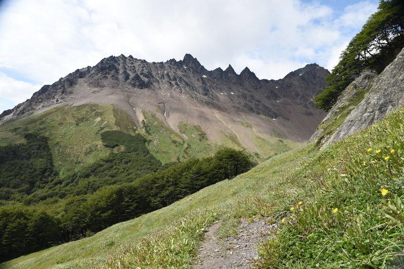 Descending the Laguna del Caminante Trail