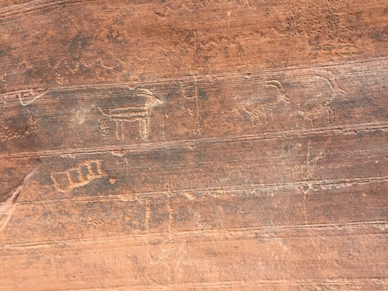 Petroglyphs...prehistoric cave drawings to the left of the large arch rock cave!
