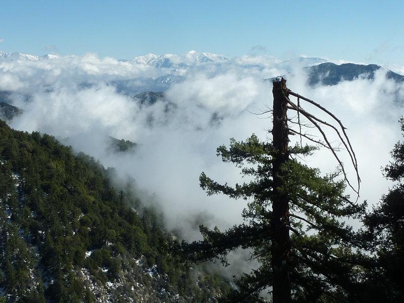 Telegraph Peak from Mt. Wilson Toll Road