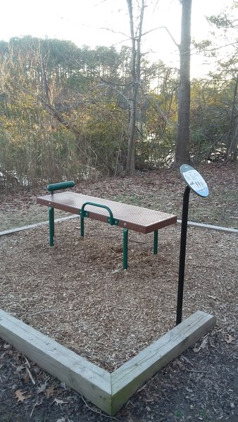 Sit-Up Exercise Station