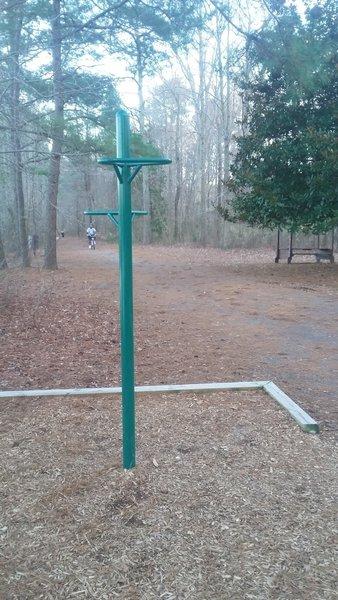 Hanging Knee/Leg Raise Exercise Station