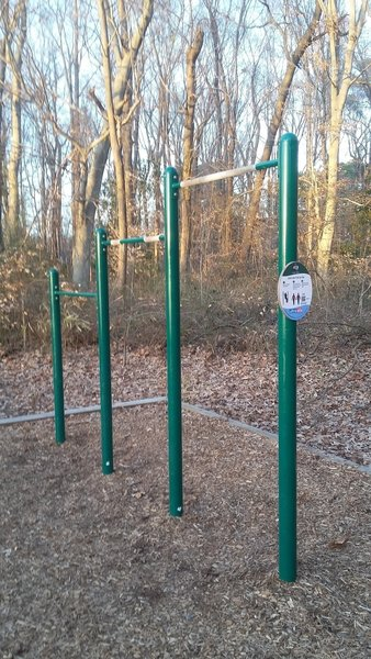 Pull-Up Exercise Station