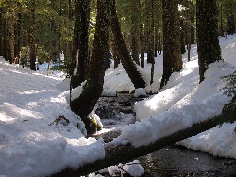 Ruckel Creek in winter
