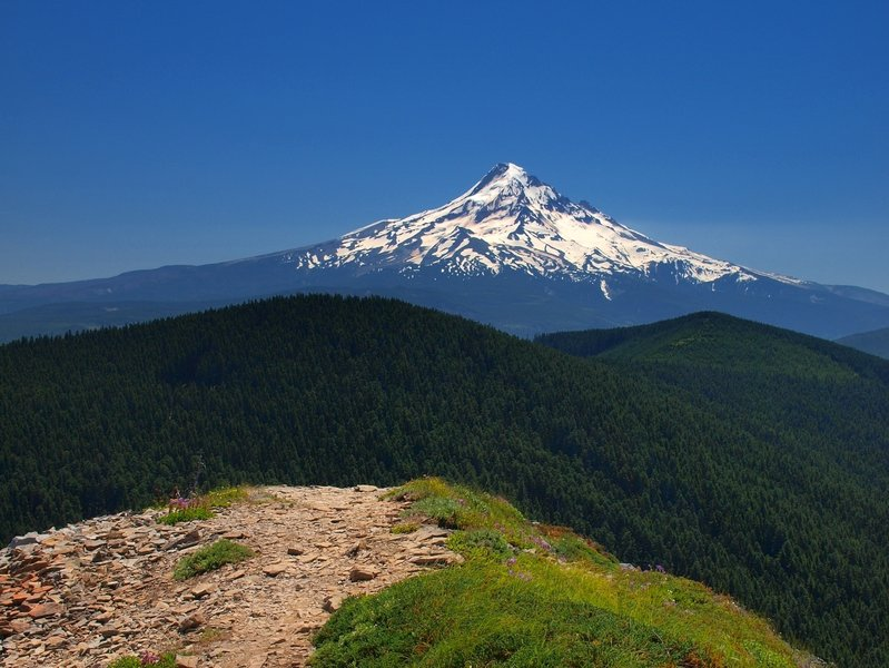 Mount Hood from Chinidere Mountain