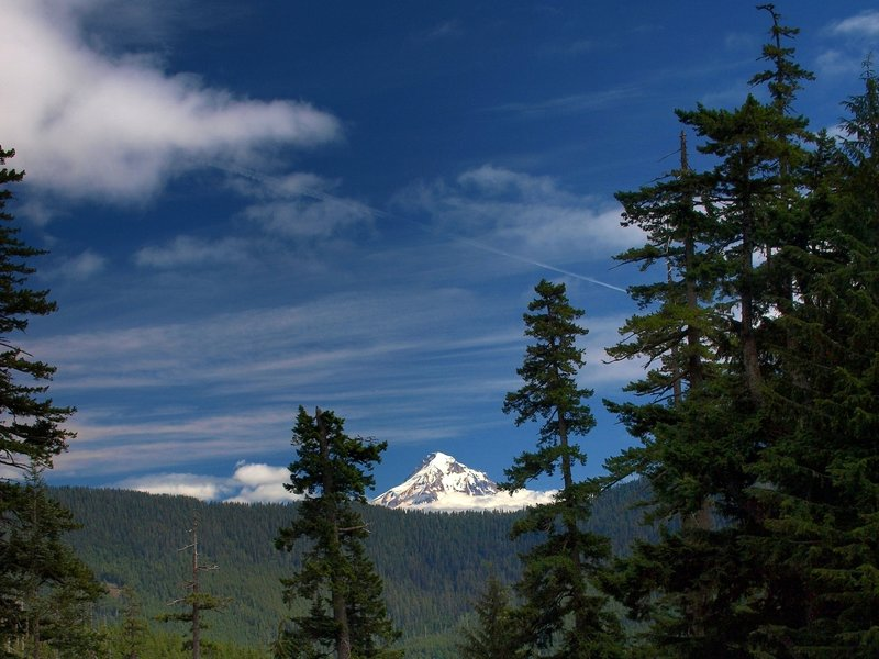 Mount Hood from the #433