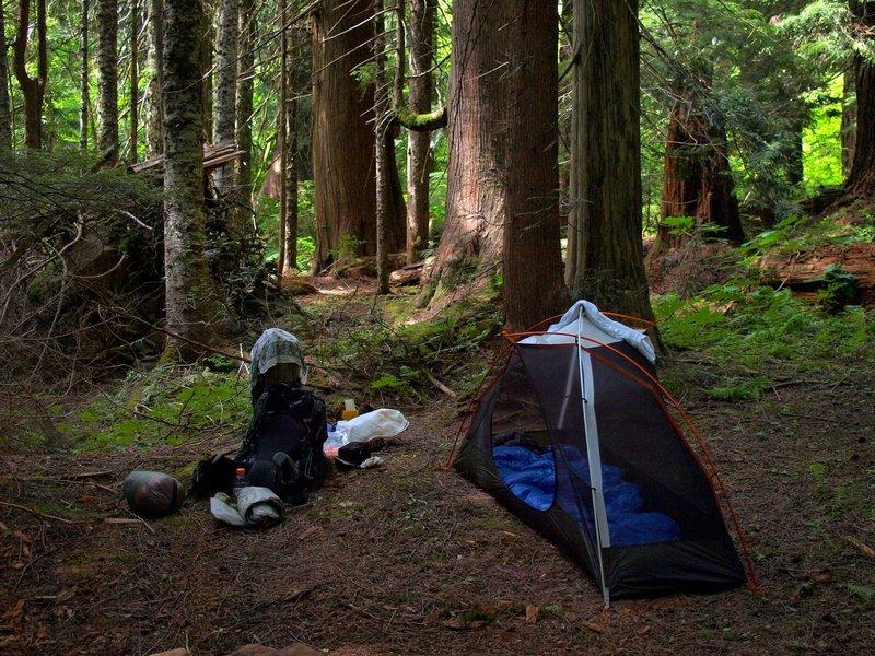 Camping at Big Cedar Springs