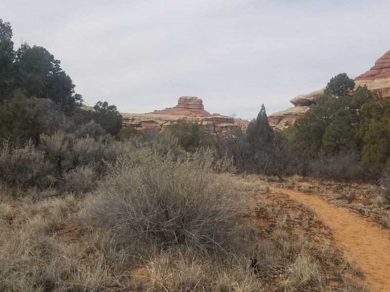Sandy section of trail