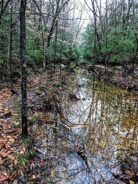 Crossing at Hannah's Creek