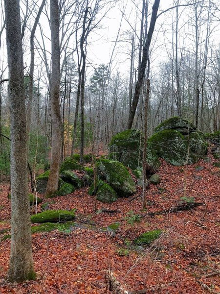 Rock outcropping on the trail