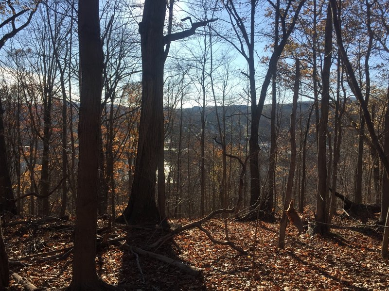 View of the Monongahela River valley from the Strausbaugh Trail
