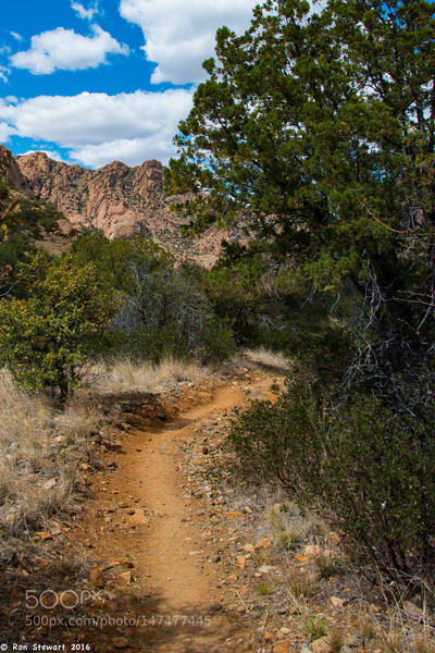 Headed Back, Southeast Arizona: Scenes in Cochise Stronghold, in the center of the range, in Southeast Arizona.