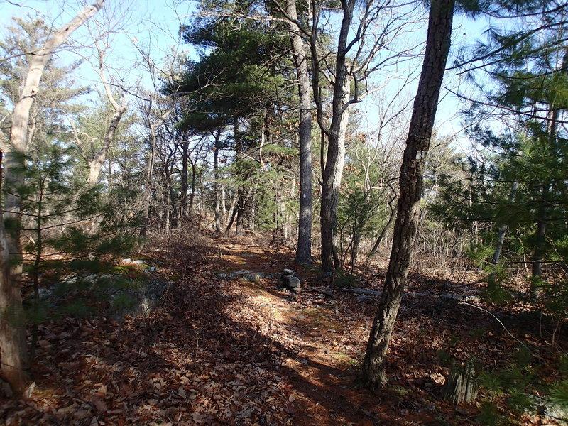 Hank's East Trail