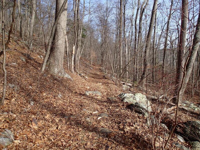 Hank's West Trail