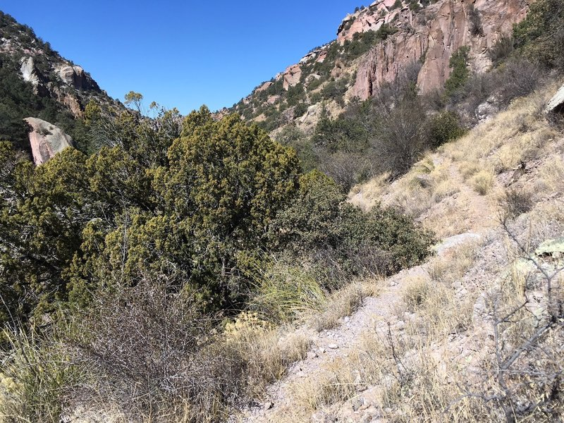 Parts of the unmaintained trail is a breeze to hike.