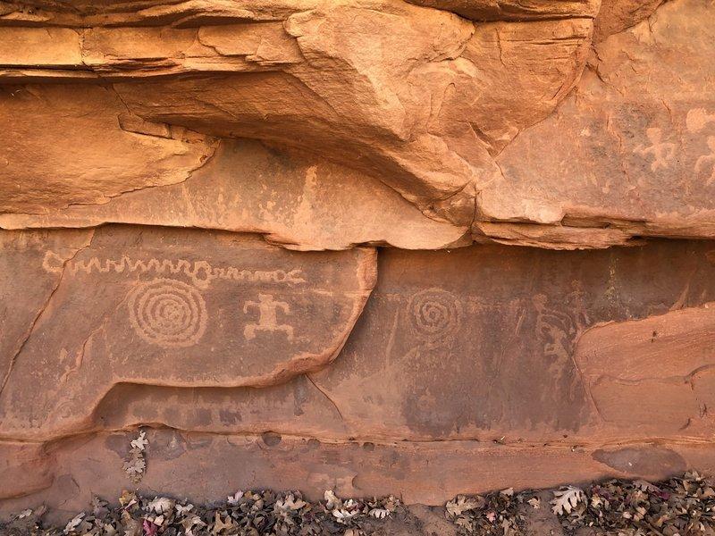 A few of the petroglyphs