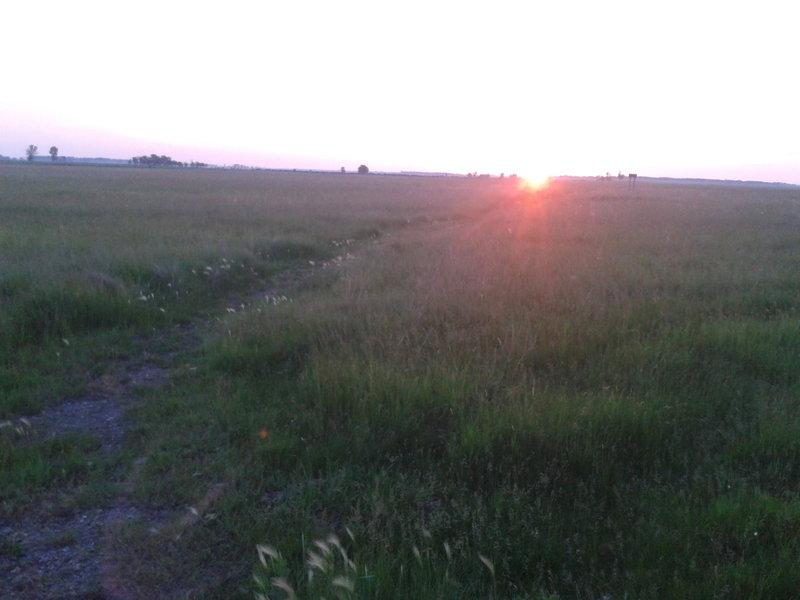 Sunrise over the Grasslands