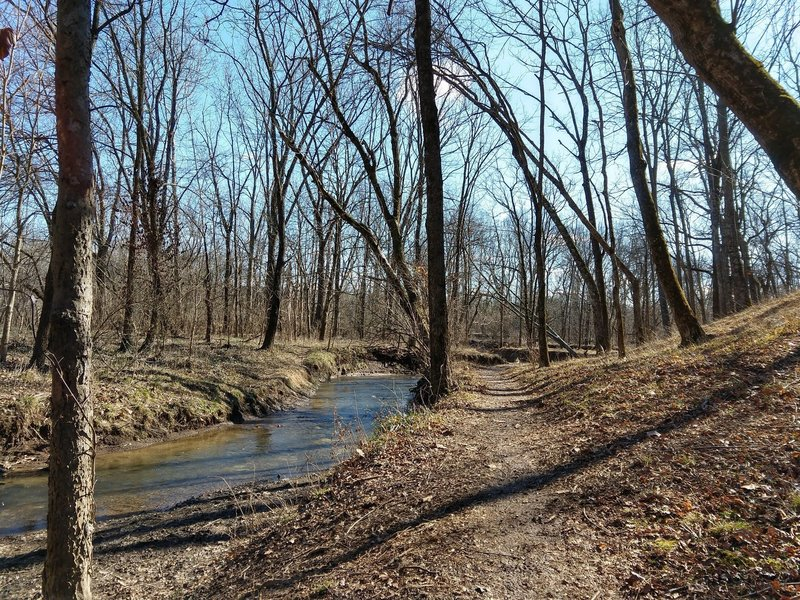 Veteran's Park trail, creekside.
