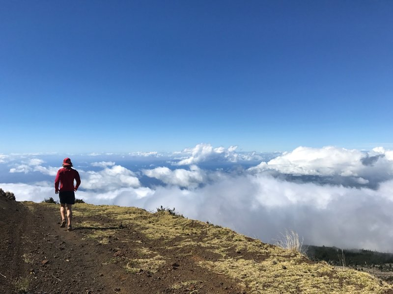 Way above the clouds on the Skyline Trail