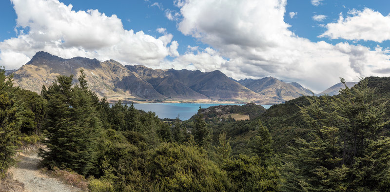 Lake Wakatipu from Mount Crichton Loop Track
