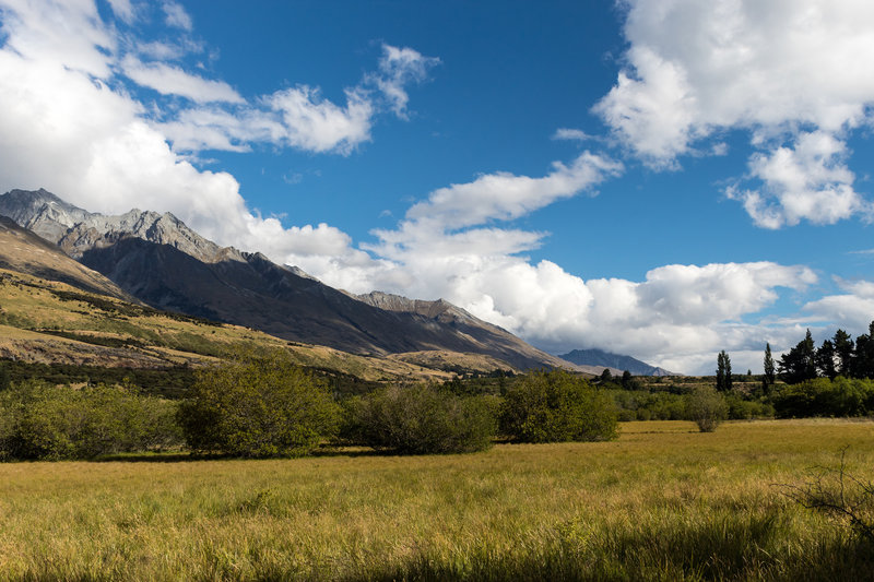 Meadows around the Glenorchy Lagoon