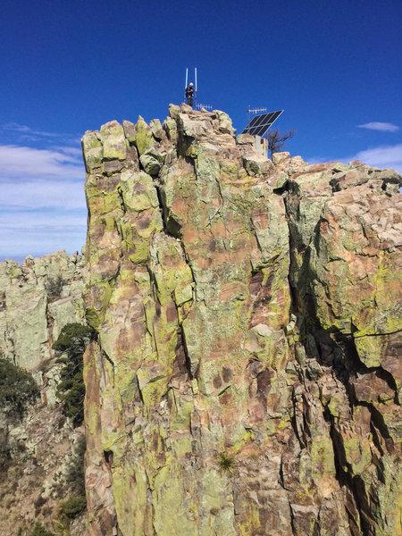 on Emory Peak