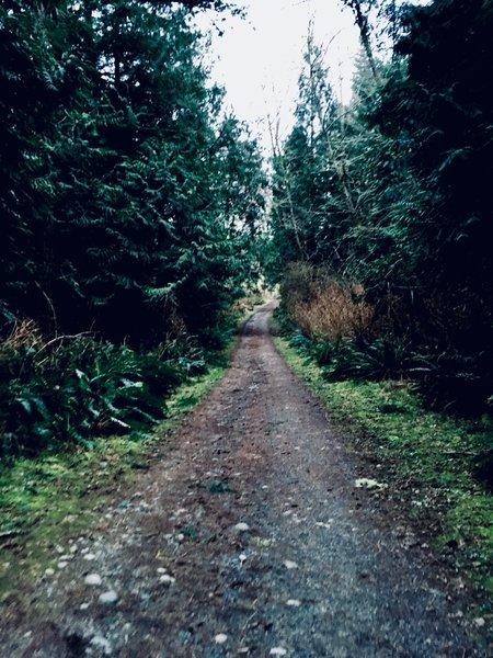 Trail 10