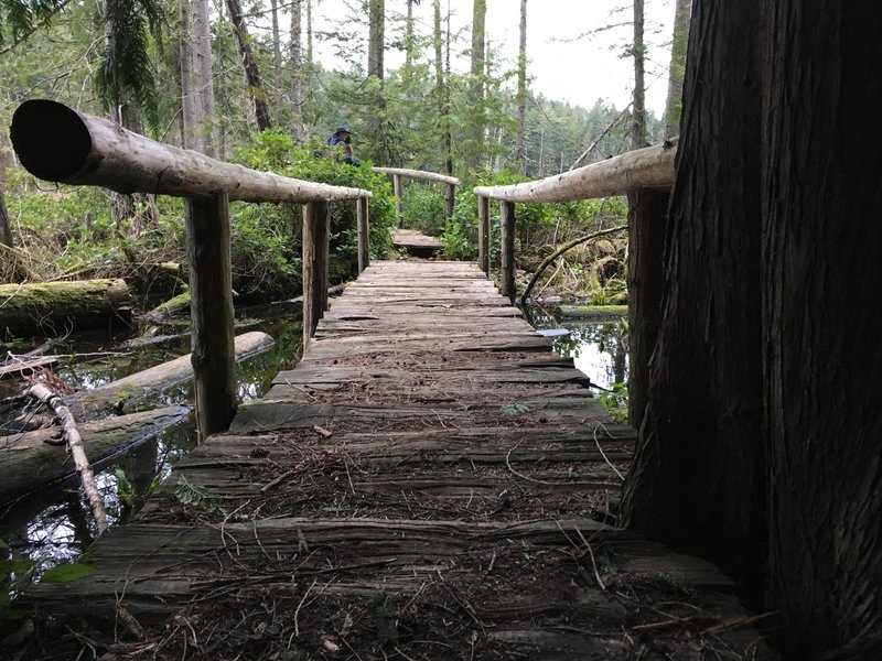 The bridge to the viewpoint.