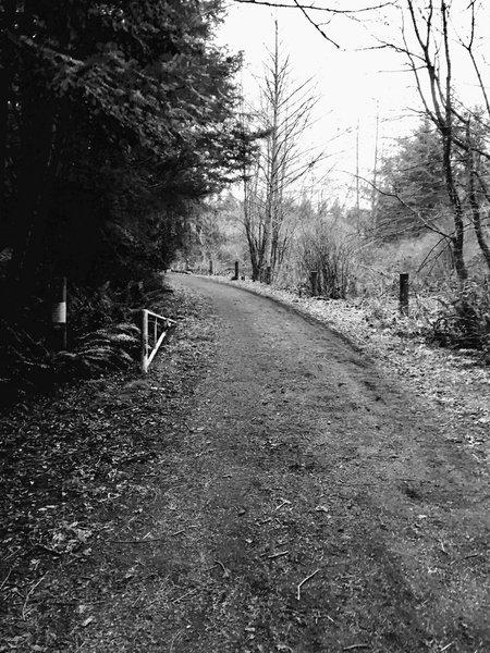 Trail 10.