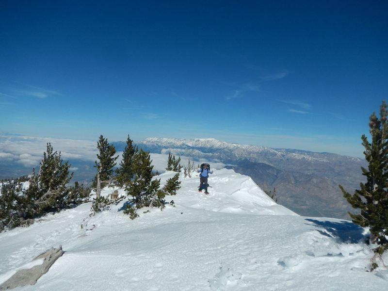 Almost to the top of San Jacinto - January 2017