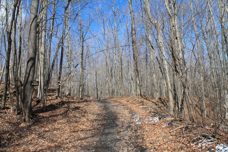 Nice day on Carrick Road and the Perimeter trail.