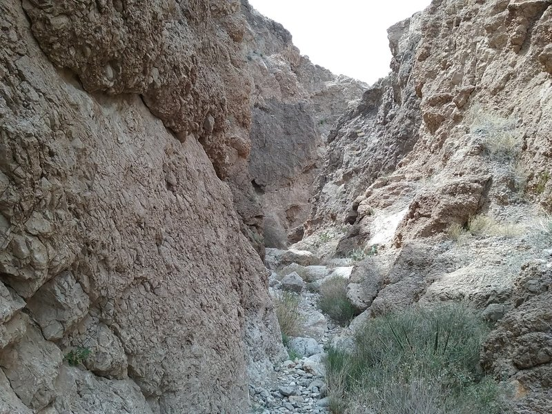 View of bottom of Deep Canyon. This canyon can be reached just a little ways off Vertigo Ridge Trail.
