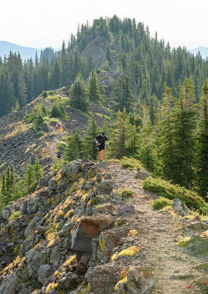 Runners on the Grand Mesa Ultras Course traversing Crag Crest