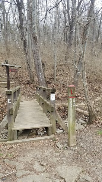 L Trail at Area 24 off West Fork Rd.