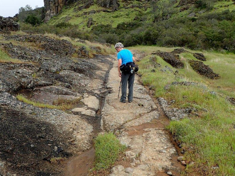 Wagon ruts in the trail