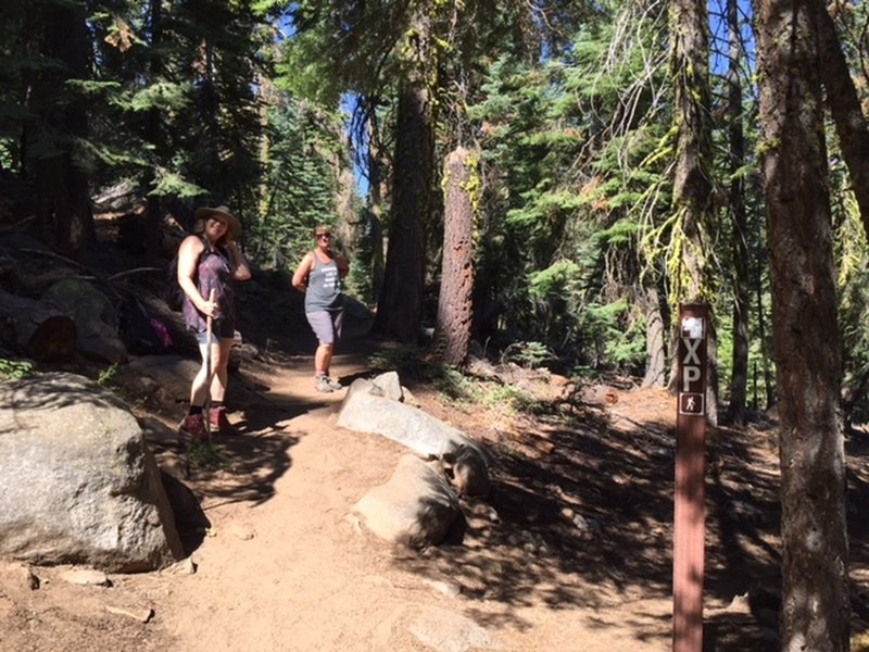 The upper fork takes hikers to the top of Lover's Leap. The lower fork, the historic Pony Express Trail, takes hikers below to Lover's Leap campground. To the photog's back, the trail goes to Camp Sacramento.