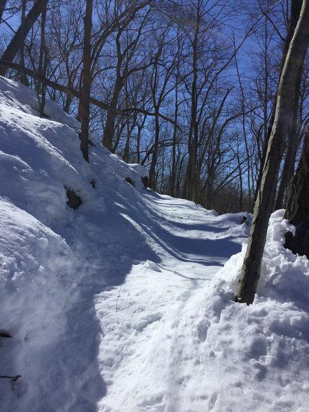 "1.5"" deep snow"