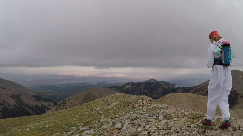 Looking west from the top of Manns Peak.
